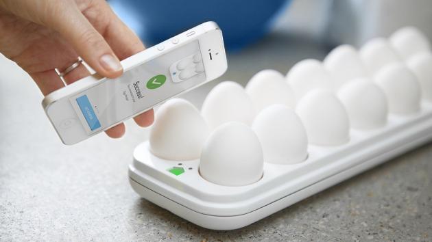 Egg Minder 2